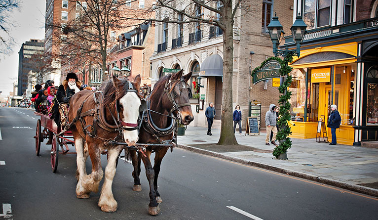 A horse-drawn carriage on Chapel Street in downtown New Haven.