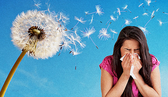 After A Long And Harsh Winter Spring Has Sprung Along With It Seasonal Allergies May Is National Asthma Allergy Awareness Month