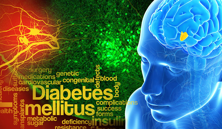 A collage including a word cloud of diabetes terms and a highlighted region of the brain
