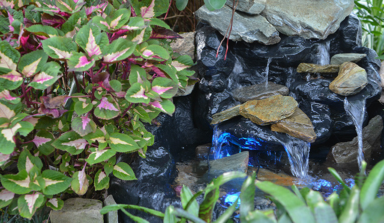 A small stream trickles over rocks with lush plantlife nearby.