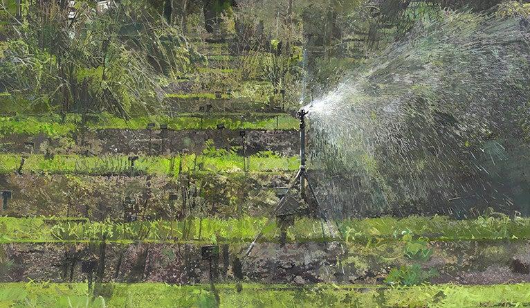 "Eileen Hogan, ""Chelsea Physic Garden 2"""