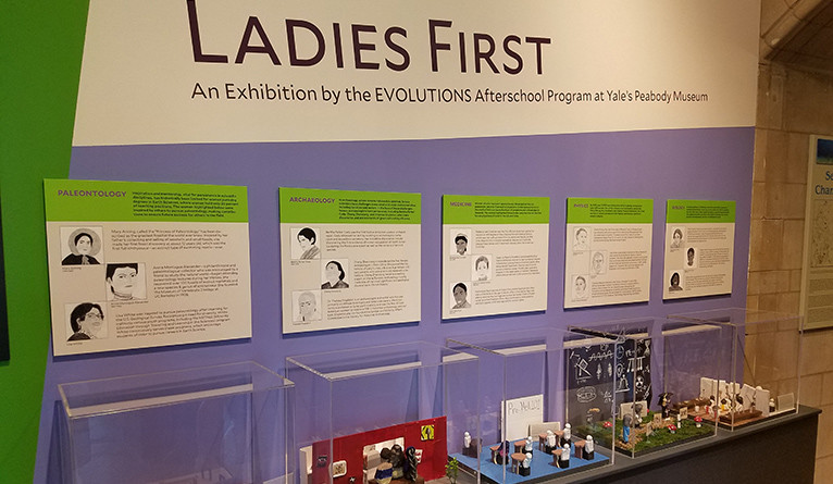 Display cases at the Ladies First women in STEM exhibition at the Peabody Museum.