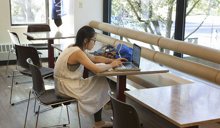A student studies in the McDougal Center common room.