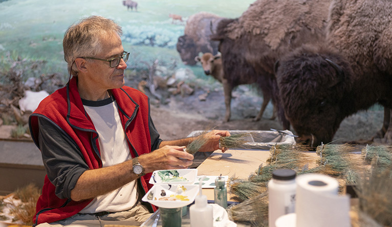 Michael Anderson prepares recently acquired buffalo grass from Wyoming.