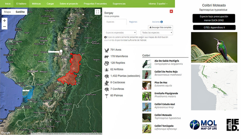 The Biodiversity Dashboard highlights the geographic range of a species of bird on a map of South America.