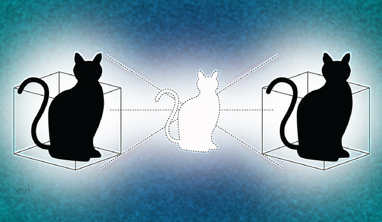 An illustration depicting the Schrödinger's cat paradox