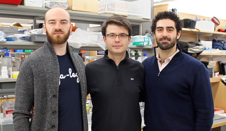 Sestan and Zvonimir Vrselja (left) and Stefano Daniele (right), the two co-first authors of the paper highlighted by Nature