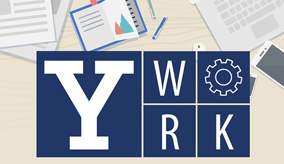Y-work program logo