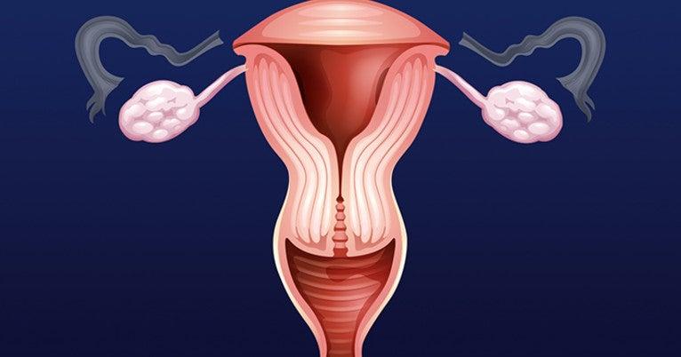 endometrial cancer keep ovaries