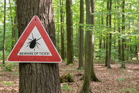 A Beware or Ticks sign posted in a temperate forest.