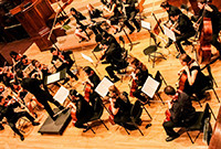 A photo of Berkeley College Orchestra.