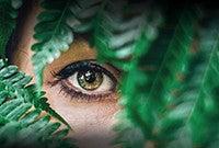 An eye looking through jungle foliage.