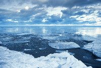 A stock image of melting ice in the Arctic.
