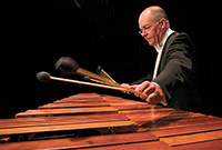 Musician Robert van Sice playing percussion.