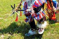 Native American indian in traditional costume dancing on grass.