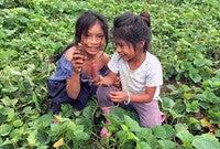 Shuar children in the Amazon
