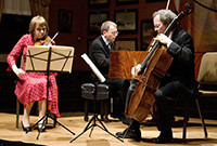 A classical music ensemble, featuring two male musicians and a female musician.
